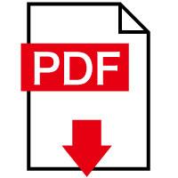 icn_pdf